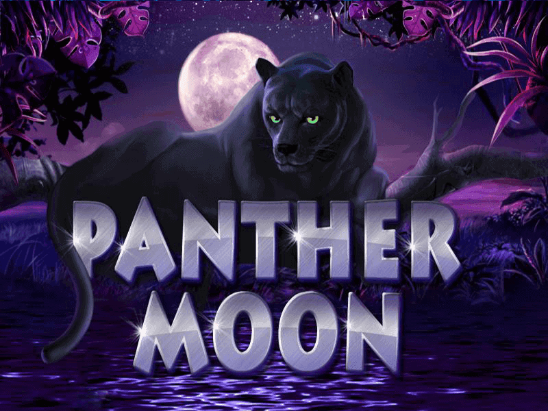 PANTHER MOON รีวิวเกม