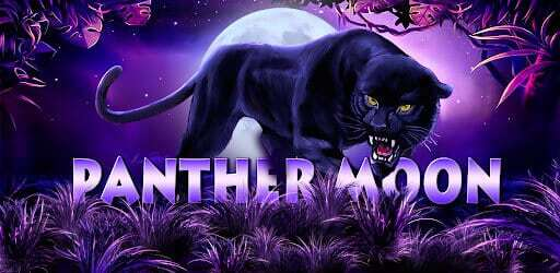 รีวิวเกมสล็อต Panther Moon